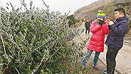 香港遭遇近60年来最低温 大帽山上85人被冻伤
