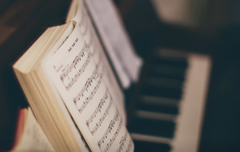 &quot在负责教学的猫老师看来成年人与小孩子学钢琴的目的和方式都不一
