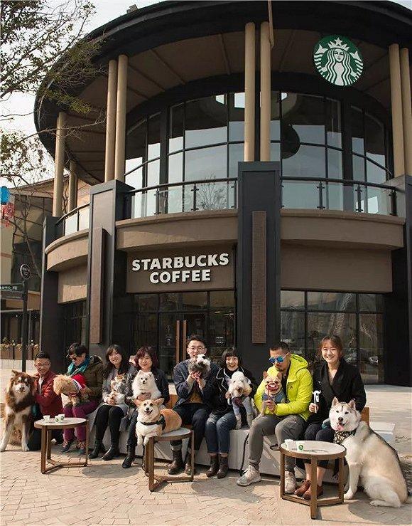 星巴克在成都和廣州開了兩家寵物友好門店 社區化是它的新方向