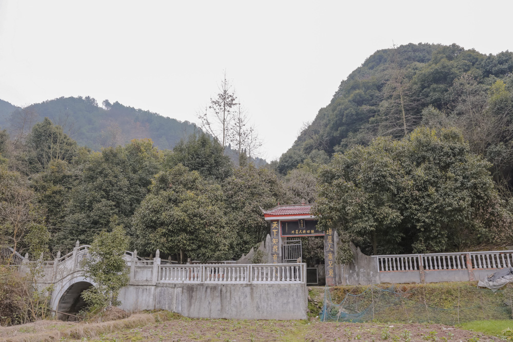 最初,我在初中同学的朋友圈看到附近的麻阳栗坪乡三家村有一个外星人
