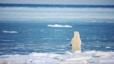 氣溫上升要控制2攝氏度內 未來50年全球發電量需增長四倍