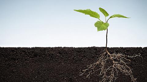責任人不明確怎么辦? 專家解讀土壤污染防治法