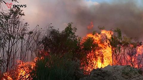 南非花園大道沿線失火16600公頃土地波及,目前已至7人死亡