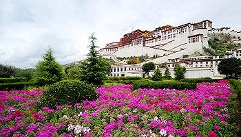紀念西藏民主改革60周年