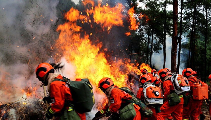 凉山木里森林火灾牺牲人员名单公布图片