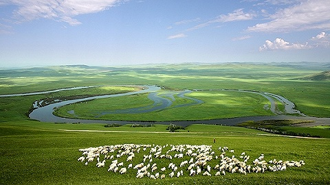 行业寒冬下净利缩水七成,这家内蒙古生态公司要拓展区外业务