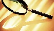 国家统计局通报宁夏灵武重大统计违纪违法案件:42人被处分,含厅级4人