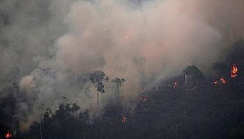 亚马孙森林大火
