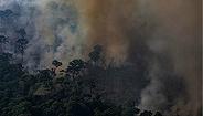 資本主義給亞馬遜雨林點了一把火