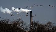 直通部委| 生態環境部:74城PM2.5平均濃度5年下降41.7% 商務部:中央儲備凍豬肉累計投放30000噸