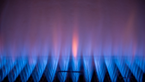 四大燃气巨头去年净利均增长,最挣钱的是哪家?