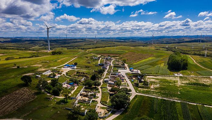 国家电投风电场因破坏植被未修复遭举报