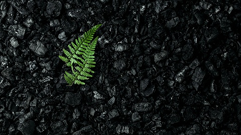 永泰能源公布重整新進展,714家債權人申報債權近500億