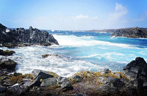 美洲色�_堪比加拉帕戈斯群岛 阿鲁巴不光有迷人的海滩,还有\