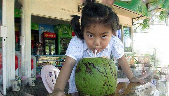 海南省长为椰子产业发展开良方,