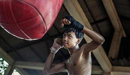 柬埔寨的小小拳击手