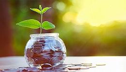 再融资新政如何影响资本市场