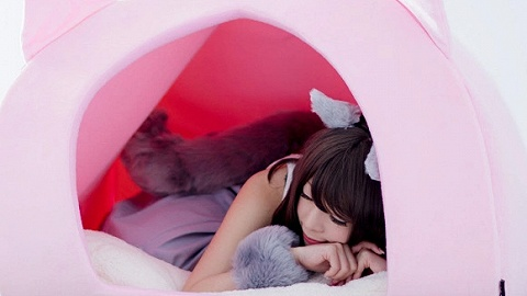 日本出了个给人用的猫窝,想当小奶猫了