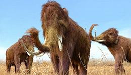 《物种再起源》:将已灭绝的动物带回人间