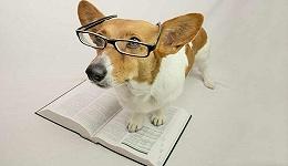 牛津词典呼吁各行业公众帮忙贡献、解释职场俚语