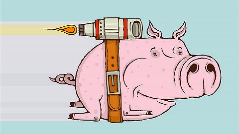 """创新需要""""猪队友"""""""