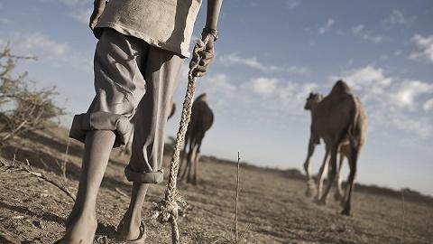 索马里宣布与几内亚断交,为什么?