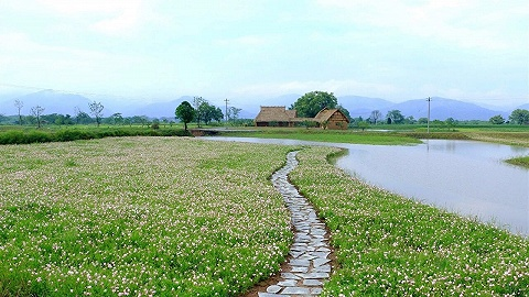 中国最新世界遗产开放参观,每天限流 3000 人?#21830;?#21069; 7 日预约