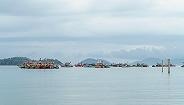 两中国游客疑遇炸鱼罹难,马来西亚警方以谋?#24330;?#23637;开调查