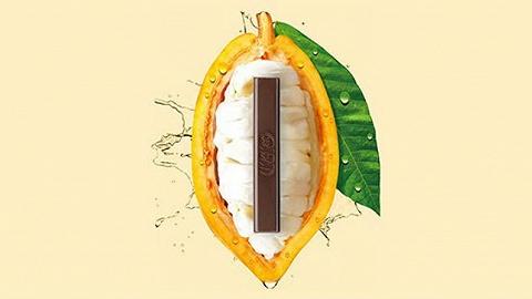 雀巢日本推出不额外加糖的可可果肉巧克力,2020年全球销售