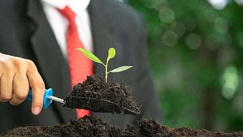 【深度】年轻人主导的新就业市场