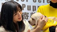 【专访】杨采妮:我怎么会跟玉女这个称号有关系?