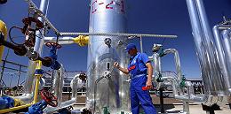 一家年輕的烏克蘭能源公司,如何攪動了美國的大選風云
