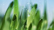 【图解】绿色发展70年之湿地:数据有话说