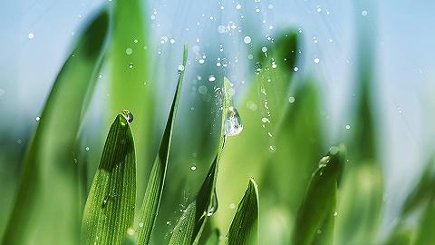 【圖解】綠色發展70年之濕地:數據有話說
