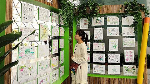 第五届上海国际自然保护周开幕,17位专家解读生态未来
