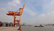 保护长江清水绿岸,上海打造45公里滨江公共空间
