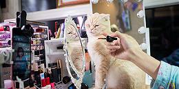 【时尚幕后人】爱网购化妆品的人,几乎都从这个工科生手中买过货