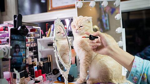 【時尚幕后人】愛網購化妝品的人,幾乎都從這個工科生手中買過貨