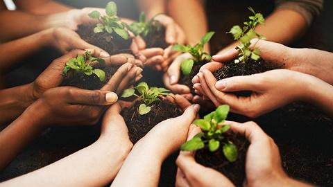 以科技创新推动绿色发展