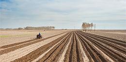 中央再发文保持土地承包关系长久不变,打消农民进城落户忧虑