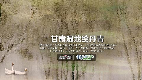 【生態文明@濕地】甘肅濕地繪丹青