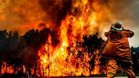 """山火与民众""""齐发怒"""",澳总理终于在气候问题上松口了"""