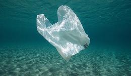 """新版""""限塑令""""发布:到2020年底商场超市等禁用不可降解塑料袋"""