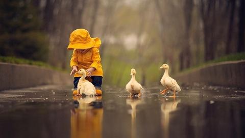 財經24小時 | 農業農村部稱禽流感在我國發生率低