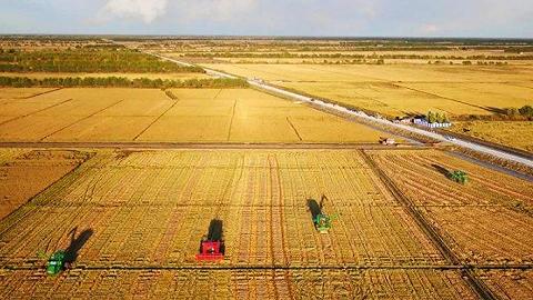 日政府敲定农业政策指针,提出自给率45%目标