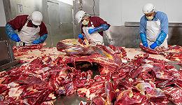 新冠疫情如何为我们揭开了肉类工业的残酷一角?