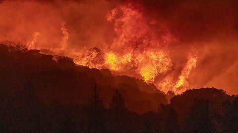 美国西岸野火肆虐波及加拿大,31人数千住宅葬身火海