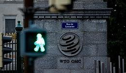 WTO总干事:改革的前提是重塑信任