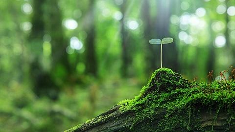 绿水青山生态价值怎么算?浙江获准探索GEP核算应用体系