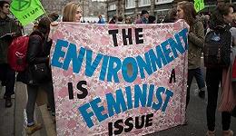 """从""""我们""""到""""她们"""":探寻性别与全球变暖的关系"""